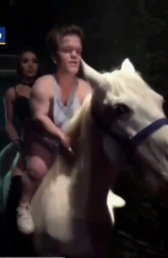 Call Peta Now — Another Horse In The Club